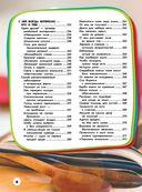 Большая детская энциклопедия для девочек — фото, картинка — 6