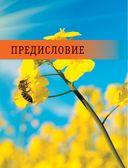 Большая энциклопедия пчеловода — фото, картинка — 5