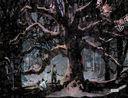 Ведьмы. Том 1 — фото, картинка — 6