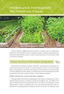 Экономим место на грядке. Повышаем урожай — фото, картинка — 5