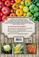 Экономим место на грядке. Повышаем урожай — фото, картинка — 7
