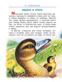 Лесные сказки и истории про животных — фото, картинка — 12