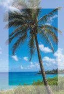 Хоопонопоно. Гавайские практики для счастливой жизни — фото, картинка — 4