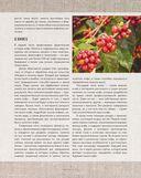 Большая книга кофе — фото, картинка — 7