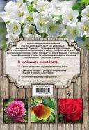 Календарь работ в саду — фото, картинка — 7