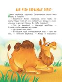 Сказки о животных — фото, картинка — 6