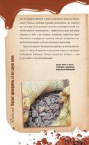 Шоколад. Вкусный путеводитель на все случаи жизни — фото, картинка — 4
