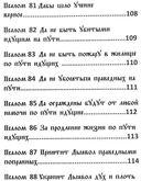 Черный Псалтырь. Колдовской фолиант — фото, картинка — 11