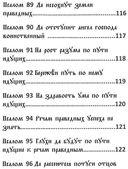 Черный Псалтырь. Колдовской фолиант — фото, картинка — 12