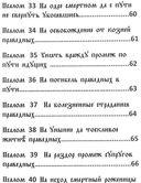 Черный Псалтырь. Колдовской фолиант — фото, картинка — 5