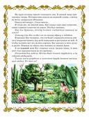Библия для детей — фото, картинка — 9