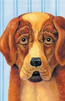 Сапсан. Рассказы о собаках — фото, картинка — 2