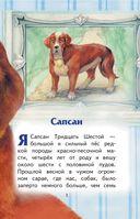 Сапсан. Рассказы о собаках — фото, картинка — 3