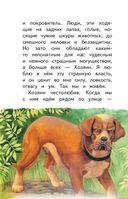 Сапсан. Рассказы о собаках — фото, картинка — 6
