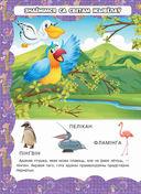 Жывая прырода — фото, картинка — 2