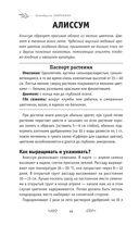 Самоучитель начинающего цветовода — фото, картинка — 11
