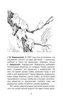 Наука в загадках и отгадках — фото, картинка — 11
