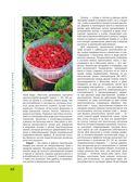 Большая иллюстрированная энциклопедия лекарственных растений — фото, картинка — 9