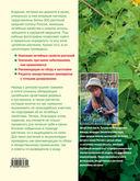 Большая иллюстрированная энциклопедия лекарственных растений — фото, картинка — 15