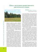 Большая иллюстрированная энциклопедия лекарственных растений — фото, картинка — 5