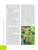 Большая иллюстрированная энциклопедия лекарственных растений — фото, картинка — 7