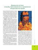 Большая иллюстрированная энциклопедия лекарственных растений — фото, картинка — 8