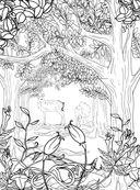 Заколдованный лес. Раскраска-антистресс для творчества и вдохновения — фото, картинка — 13