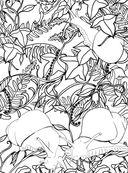 Заколдованный лес. Раскраска-антистресс для творчества и вдохновения — фото, картинка — 7