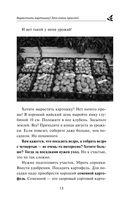 Кормилица-Грядка. Как вырастить большой урожай — фото, картинка — 13