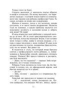 Академия Стихий. Душа Огня (м) — фото, картинка — 11