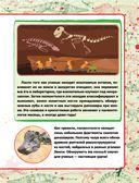 Динозавры — фото, картинка — 7