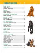 Собаки и щенки. Энциклопедия для детского сада — фото, картинка — 1