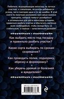 Виноград для любого региона. Как вырастить без ошибок? 50 шагов к успеху — фото, картинка — 14