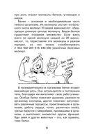 Как устроен человек — фото, картинка — 6