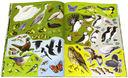 Малиновки, синицы и другие птицы. В гости к природе — фото, картинка — 2