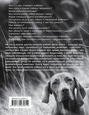 Собака. Полное руководство по дрессировке и уходу — фото, картинка — 15
