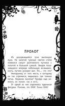 Тайна древнего амулета — фото, картинка — 7