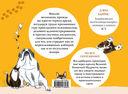 Где моя мышь? Занимательная психология для любителей котиков — фото, картинка — 16