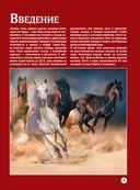 Лошади. Большой иллюстрированный гид — фото, картинка — 2