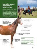 Лошади. Большой иллюстрированный гид — фото, картинка — 14