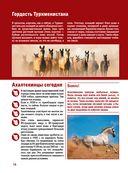 Лошади. Большой иллюстрированный гид — фото, картинка — 15