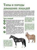 Лошади. Большой иллюстрированный гид — фото, картинка — 3