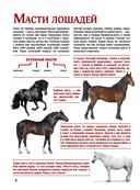 Лошади. Большой иллюстрированный гид — фото, картинка — 7