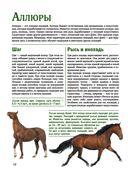Лошади. Большой иллюстрированный гид — фото, картинка — 9
