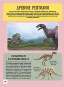 Детский иллюстрированный атлас динозавров — фото, картинка — 9