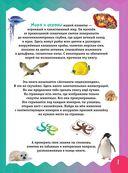 Животные морей и океанов — фото, картинка — 1