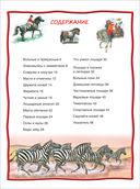 Лошади и пони — фото, картинка — 1