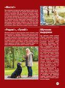 Собаки — фото, картинка — 14