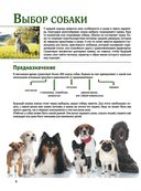 Собаки — фото, картинка — 3