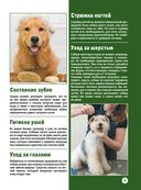 Собаки — фото, картинка — 8